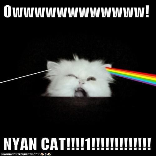 Owwwwwwwwwwww!  NYAN CAT!!!!1!!!!!!!!!!!!!