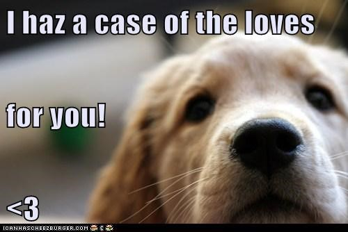 I haz a case of the loves  for you! <3