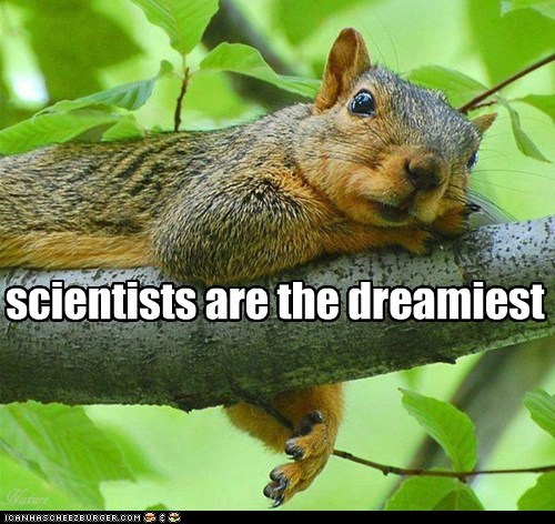 scientists are the dreamiest Squirrel