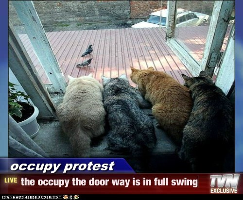 occupy protest - the occupy the door way is in full swing