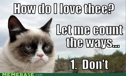 love,Grumpy Cat,poems