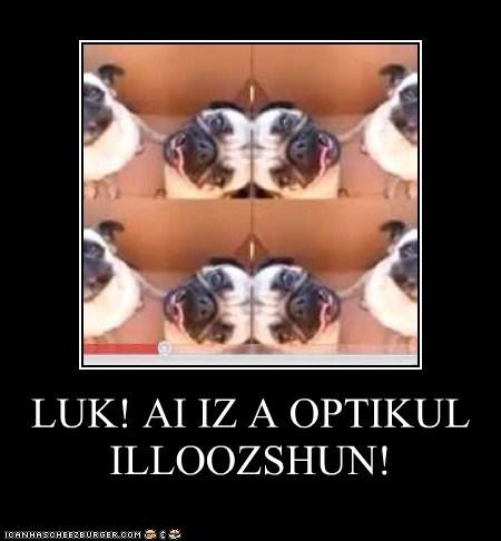LUK! AI IZ A OPTIKUL ILLOOZSHUN!