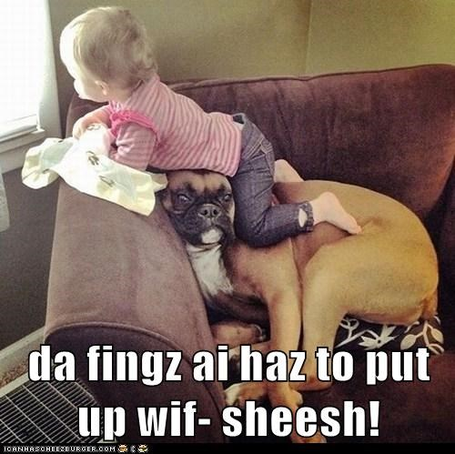 da fingz ai haz to put up wif- sheesh!