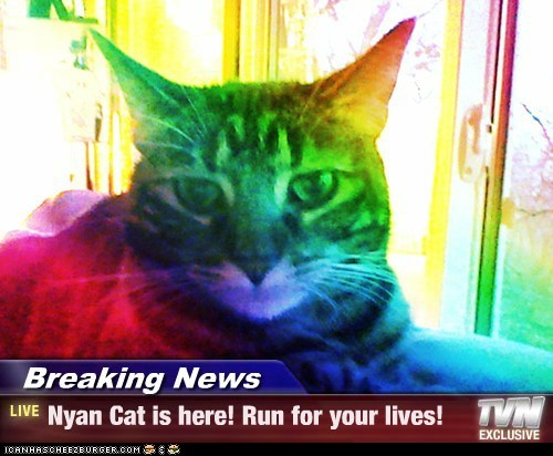 Breaking News - Nyan Cat is here! Run for your lives!