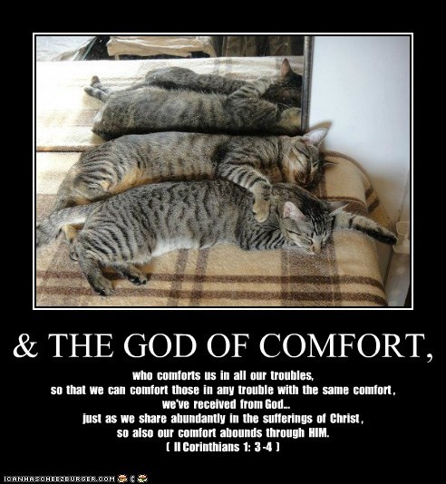 & THE GOD OF COMFORT,