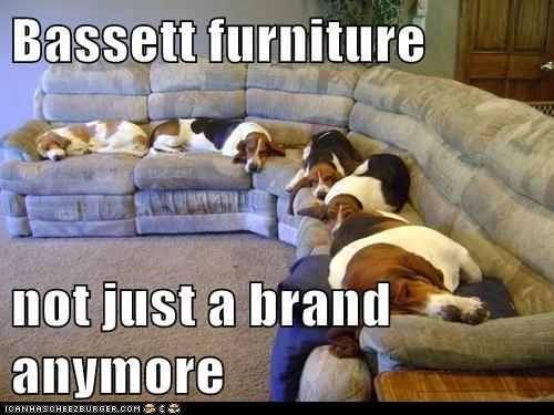 Bassett furniture  not just a brand anymore