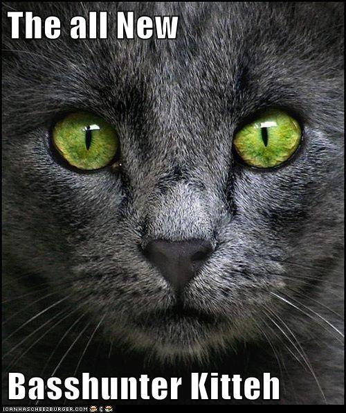The all New  Basshunter Kitteh