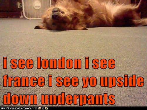 i see london i see france i see yo upside down underpants