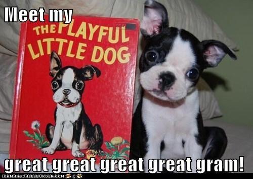 Meet my  great great great great gram!