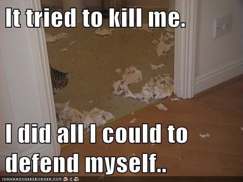 It Tried to Kill Me.