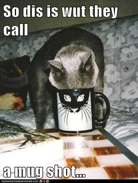 So dis is wut they call  a mug shot...