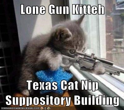 Lone Gun Kitteh  Texas Cat Nip Suppository Building