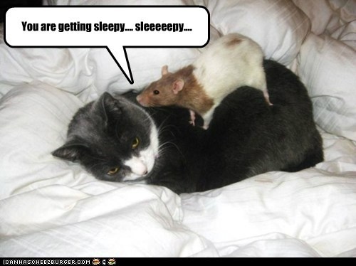 You are getting sleepy.... sleeeeepy....