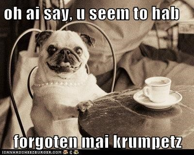 oh ai say, u seem to hab  forgoten mai krumpetz