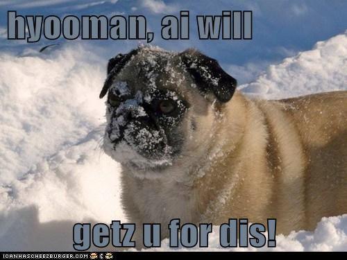 hyooman, ai will  getz u for dis!