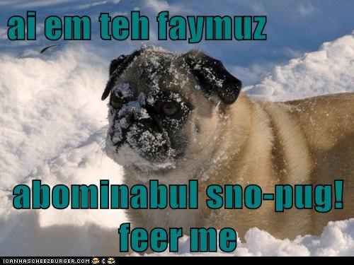 ai em teh faymuz  abominabul sno-pug! feer me