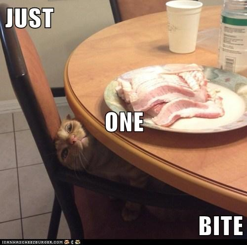 I Will Has Bacon Eventually!