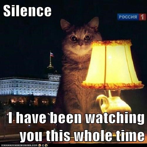 Silence  I have been watching you this whole time