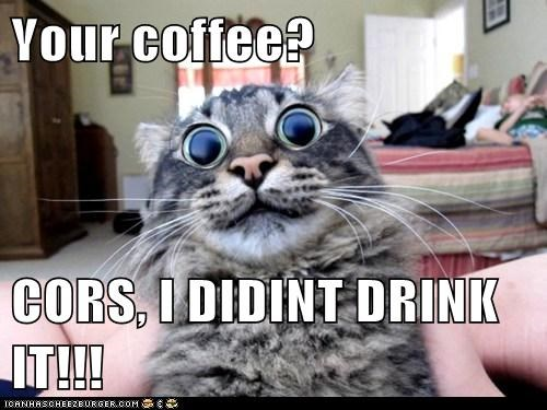 Your coffee?  CORS, I DIDINT DRINK IT!!!