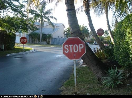 I said stop...