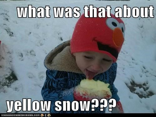 what was that about   yellow snow???
