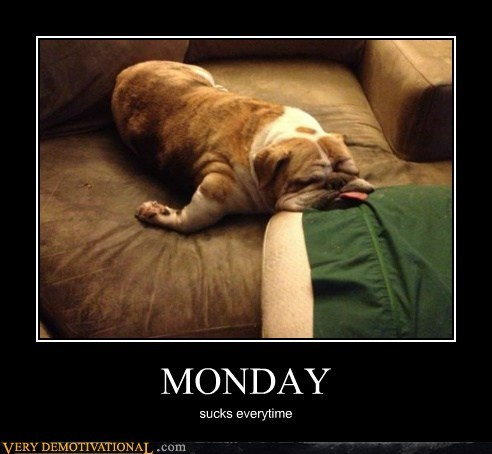 tired,dogs,monday
