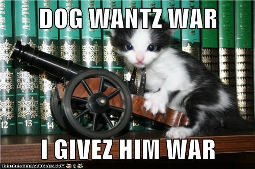 DOG WANTZ WAR  I GIVEZ HIM WAR