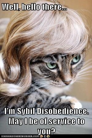 Well, hello there...  I'm Sybil Disobedience. May I be of service to you?