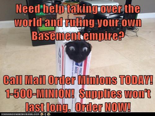 Need help taking over the world and ruling your own Basement empire?  Call Mail Order Minions TODAY!  1-500-MINION!  Supplies won't last long.  Order NOW!