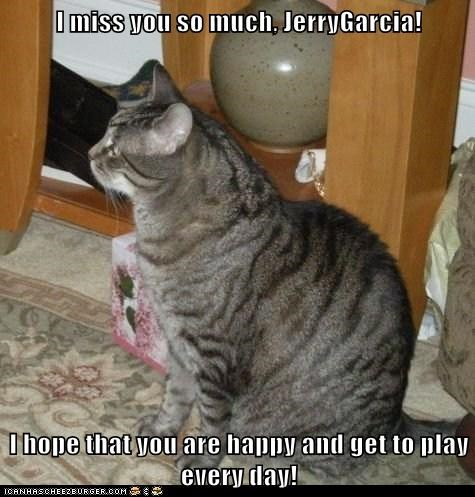 I miss you so much, JerryGarcia!  I hope that you are happy and get to play every day!