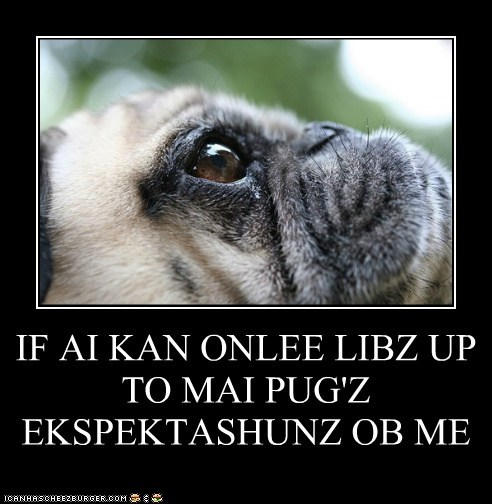 IF AI KAN ONLEE LIBZ UP TO MAI PUG'Z EKSPEKTASHUNZ OB ME