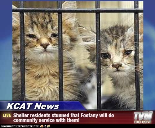 KCAT News - Shelter residents stunned that Foofany will do community service with them!