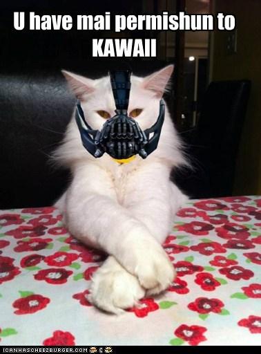 U have mai permishun to KAWAII