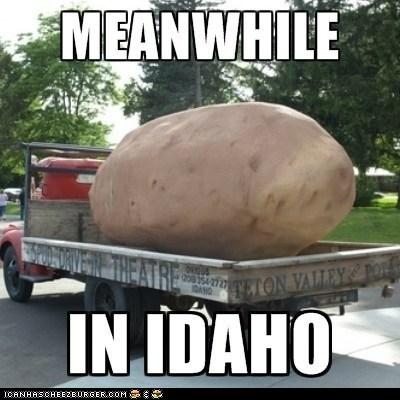 MEANWHILE IN IDAHO