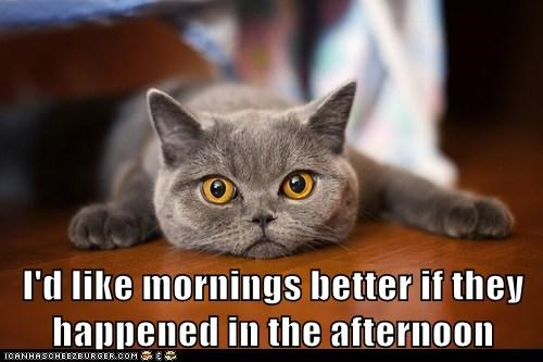 I'd like mornings better if they happened in the afternoon