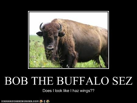 BOB THE BUFFALO SEZ