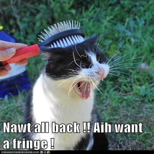 Nawt all back !! Aih want a fringe !