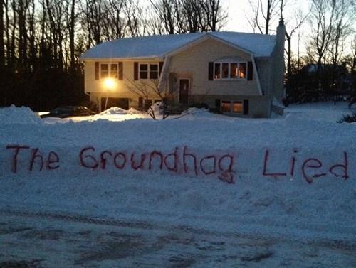 snow,groundhog day,winter