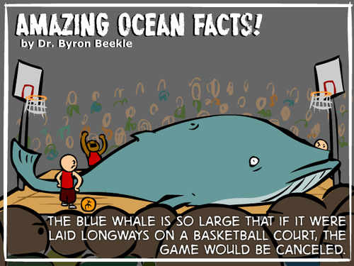 Classic: That Strange Dr. Beekle's Ocean Facts