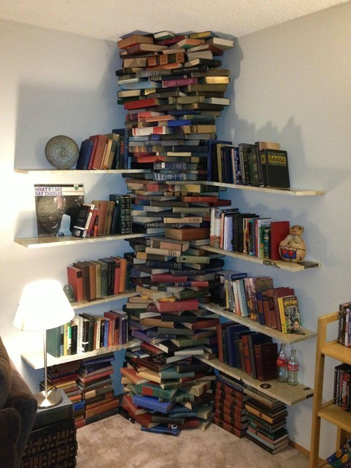 Book AND Shelves, a Two-For-One!