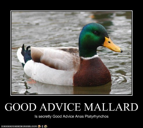 GOOD ADVICE MALLARD