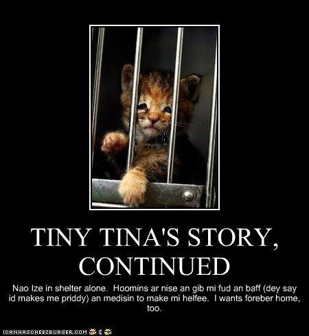 TINY TINA'S STORY, CONTINUED