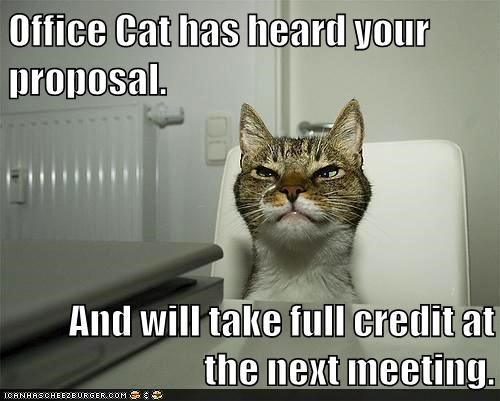 Office Cat has heard your proposal.  And will take full credit at the next meeting.