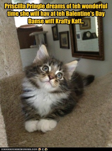Priscilla Pringle dreams of teh wonderful time she will hav at teh Balentine's Day Danse wiff Krafty Katt..