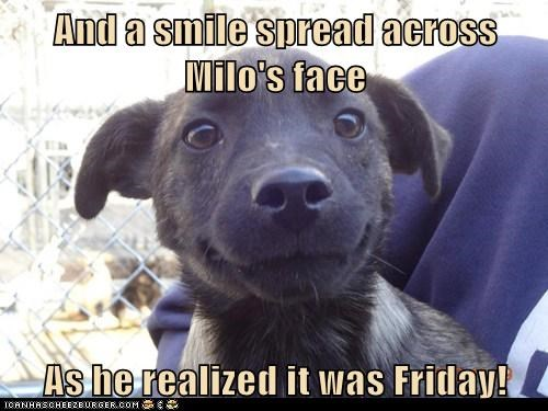 And a smile spread across Milo's face  As he realized it was Friday!