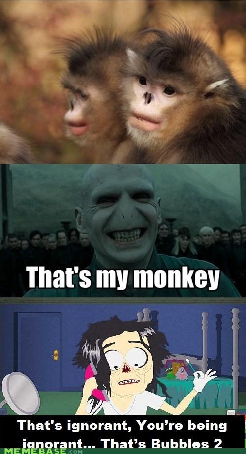 South Park,monkey,re-frames