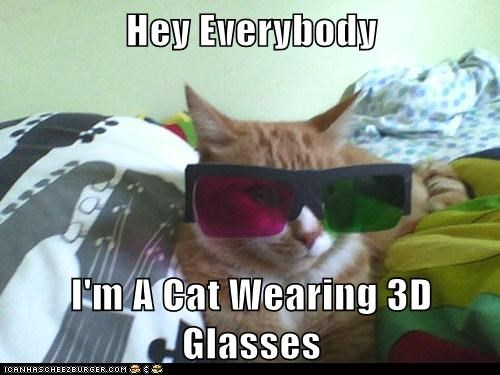 Obvious Cat - Wearing 3D Glasses