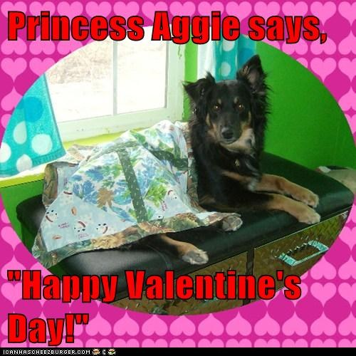 "Princess Aggie says,  ""Happy Valentine's Day!"""
