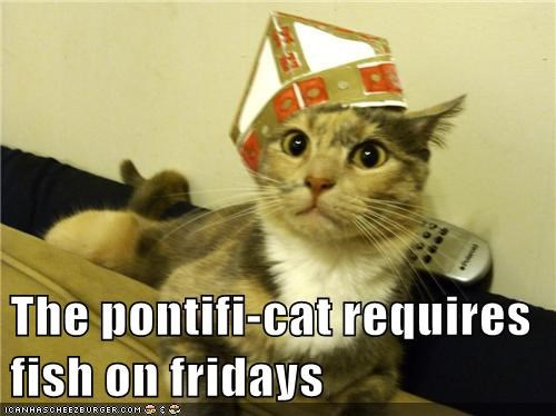The pontifi-cat requires fish on fridays