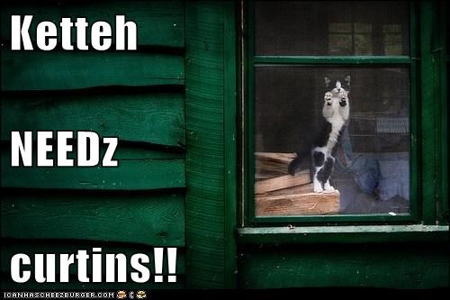 Ketteh NEEDz curtins!!